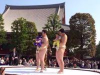 5月に開催!浅草の泣き相撲を見よう!