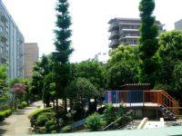 都内で水遊び出来る大横川親水公園