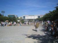 錦糸公園の口コミ:墨田区でお花見やフリマを!