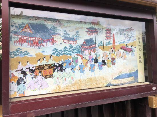 徳川将軍の篤い保護