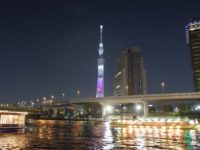 屋形船の網さだでお花見を!隅田川の桜とスカイツリーを見ながら宴会がおすすめ。