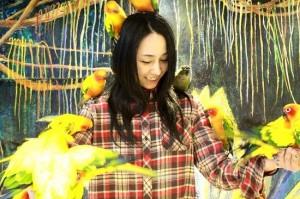 浅草鳥のいるカフェ×ことりカフェ「東京観光 鳥カフェMAP」リリース記念!!勝手に世界の鳥特集。
