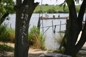 矢切の渡し:柴又帝釈天近くで観光なら、都内唯一の渡し舟に乗ろう!