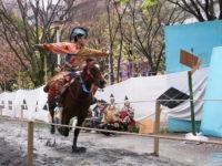 東京で流鏑馬(やぶさめ)を見るなら浅草で!馬から的に弓を射る姿は圧巻!