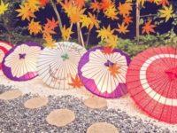 浅草で傘をお土産に。デザインの優れた和傘や折りたたみ傘を傘屋で