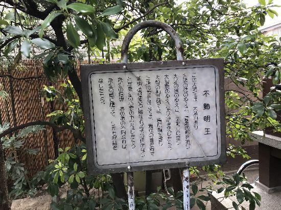 tobifudo4