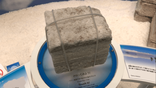 ウユニ湖の塩実物